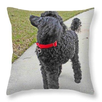 Maggie On Bird Watch Throw Pillow