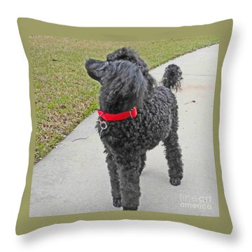 Maggie On Bird Watch Throw Pillow