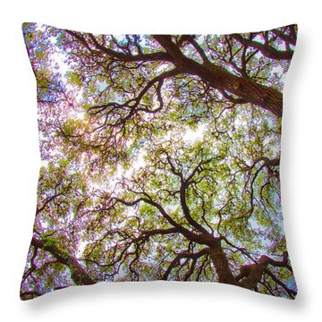 Magic Canopy Throw Pillow