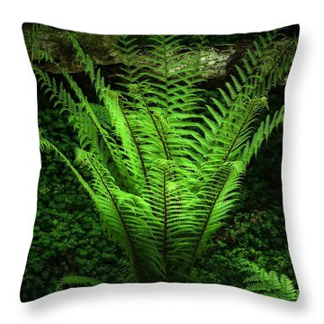 Magic Fern Throw Pillow by Svetlana Sewell