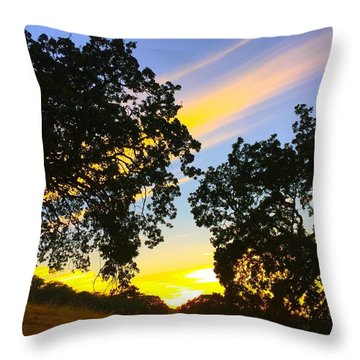 Magic Hour Sunset Throw Pillow