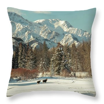 Magic In Sunlight Throw Pillow