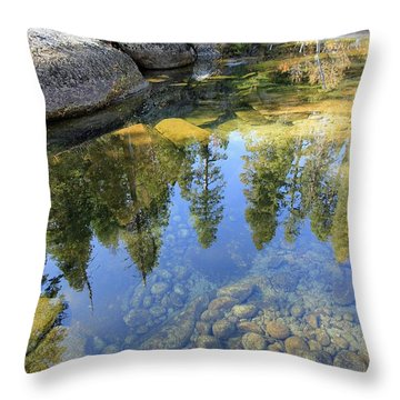 Magic Light On Big Silver Throw Pillow