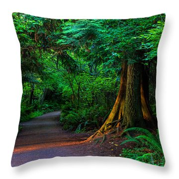 Magic Moment Throw Pillow by Alana Thrower