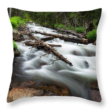 Throw Pillow featuring the photograph Magic Mountain Stream by James BO Insogna