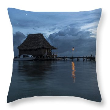 Magic Night  Throw Pillow by Yuri Santin