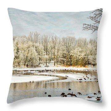 Magic Of Winter Throw Pillow