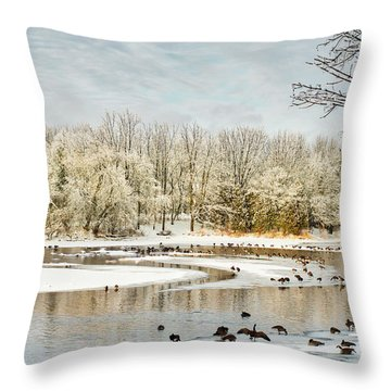 Magic Of Winter Throw Pillow