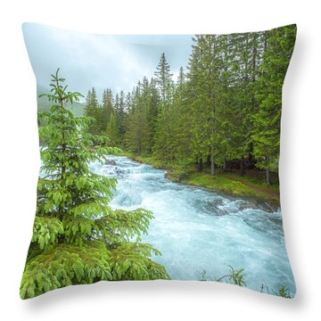 Magic Throw Pillow by Rose-Maries Pictures