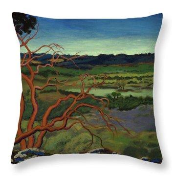 Magic Trees Of Wimberley Throw Pillow