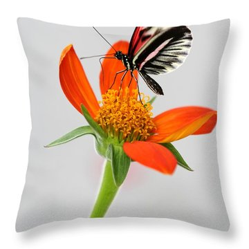 Magical Butterfly Throw Pillow by Sabrina L Ryan