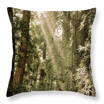 Magical Forest 2 Throw Pillow