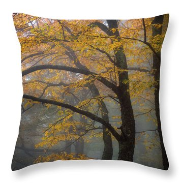 Magical Forest Blue Ridge Parkway Throw Pillow