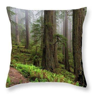 Magical Forest Throw Pillow by Scott Warner