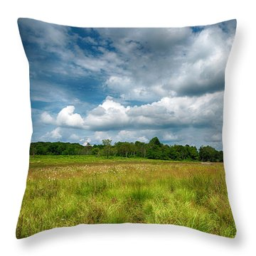 Throw Pillow featuring the photograph Magical Meadow by Lara Ellis