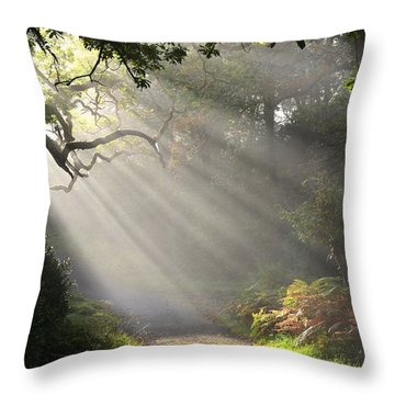 Throw Pillow featuring the photograph Magical Moment In The Park by Barbara Walsh