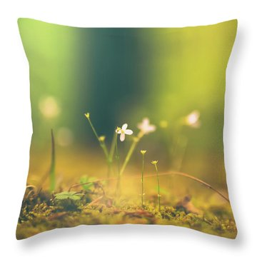Throw Pillow featuring the photograph Magical Moment by Shane Holsclaw