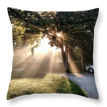 Throw Pillow featuring the painting Magical Morning by James Guentner