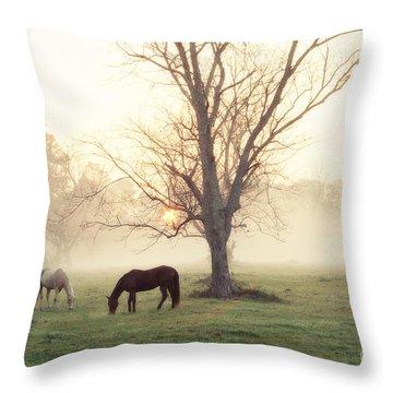 Magical Morning Throw Pillow by Scott Pellegrin