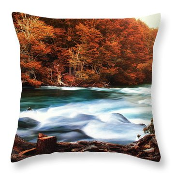 Autumnal Landscape With Lake In The Argentine Patagonia Throw Pillow