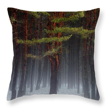 Throw Pillow featuring the photograph Magical Pines by Betty Pauwels