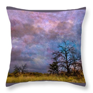 Magical Sky Throw Pillow by Carolyn Dalessandro