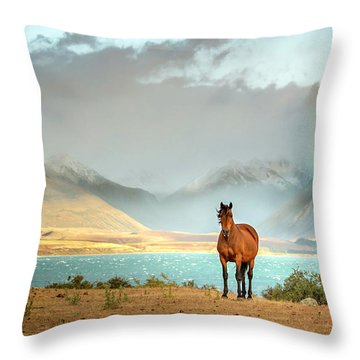 Throw Pillow featuring the photograph Magical Tekapo by Chris Cousins