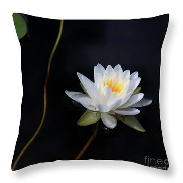 Throw Pillow featuring the photograph Magical Water Lily by Michelle Wiarda