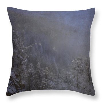 Throw Pillow featuring the photograph Magical Winter Day by Ellen Heaverlo