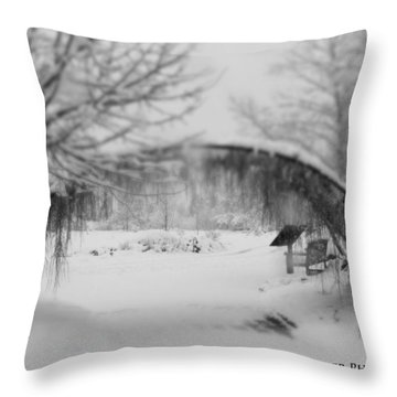 Magical Wonderland Throw Pillow