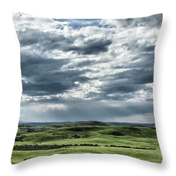 Magnetic View Throw Pillow