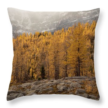 Magnificent Fall Throw Pillow