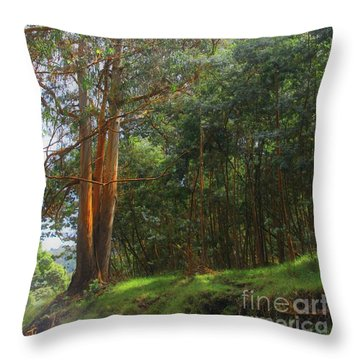 Throw Pillow featuring the photograph Magnificent Maui by DJ Florek