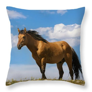 Magnificent Wild Horse Throw Pillow