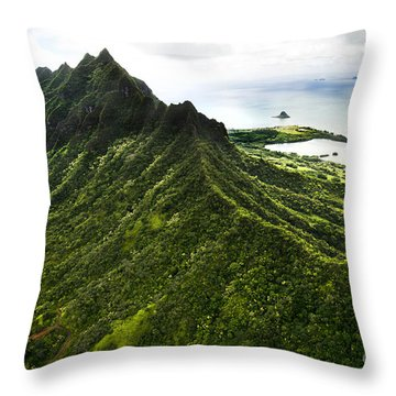 Magnificent Ridge Throw Pillow