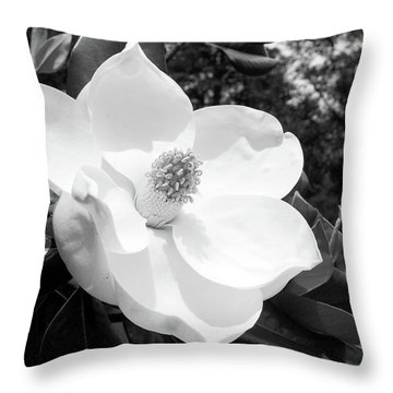 Magnolia Bloom- By Linda Woods Throw Pillow
