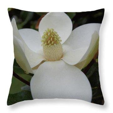 Magnolia Blossom 6 Throw Pillow