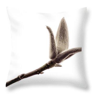 Magnolia Bud On A White Background Throw Pillow by Yvon van der Wijk
