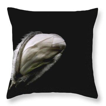 Magnolia Bud On Black Throw Pillow by Yvon van der Wijk