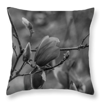 Magnolia Bw Blooms Buds Branches Throw Pillow