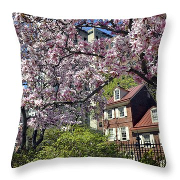 Magnolia Garden 2015 Throw Pillow