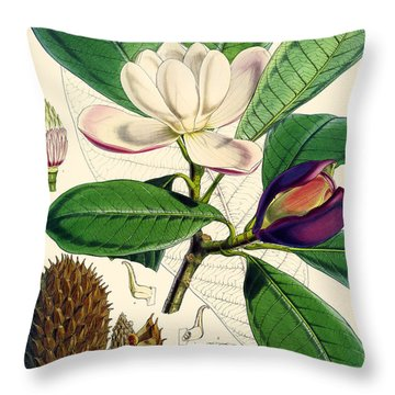 Magnolia Hodgsonii Throw Pillow