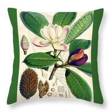 Magnolia Hodgsonii Throw Pillow