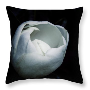 Magnolia In The Spotlight Throw Pillow