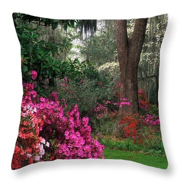 Throw Pillow featuring the photograph Magnolia Plantation - Fs000148a by Daniel Dempster