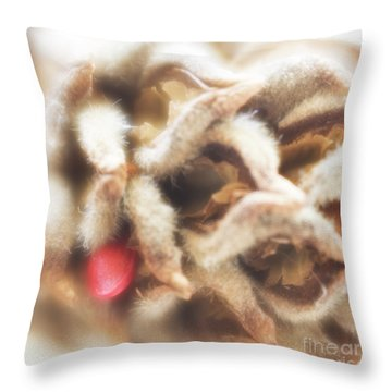 Throw Pillow featuring the photograph Magnolia Seedpod by Elena Nosyreva
