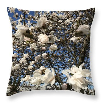 Throw Pillow featuring the photograph Magnolia Tree In Blossom by Patricia Hofmeester