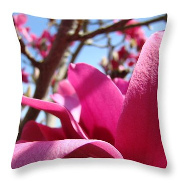Magnolia Tree Pink Magnoli Flowers Artwork Spring Throw Pillow by Baslee Troutman