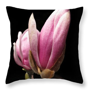 Magnolia Tulip Tree Blossom Throw Pillow
