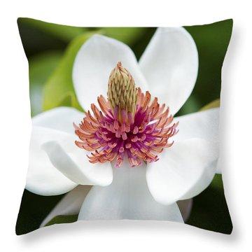 Magnolia Wieseneri Flower Throw Pillow